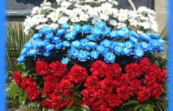 «Овеянные славой герб и флаг России»